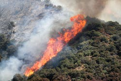 Gender Reveal Party caused a huge California Fire